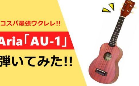 Aria 「AU-1」弾いてみた!