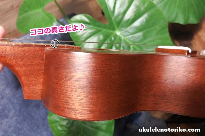 弦の高さの説明