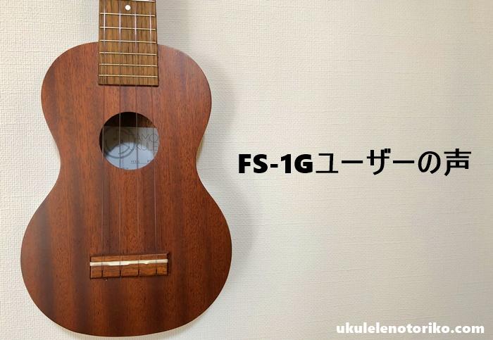 FS-1Gの口コミ